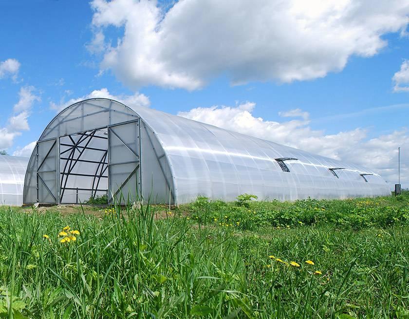 Industrielle drivhus Farmer 7,5