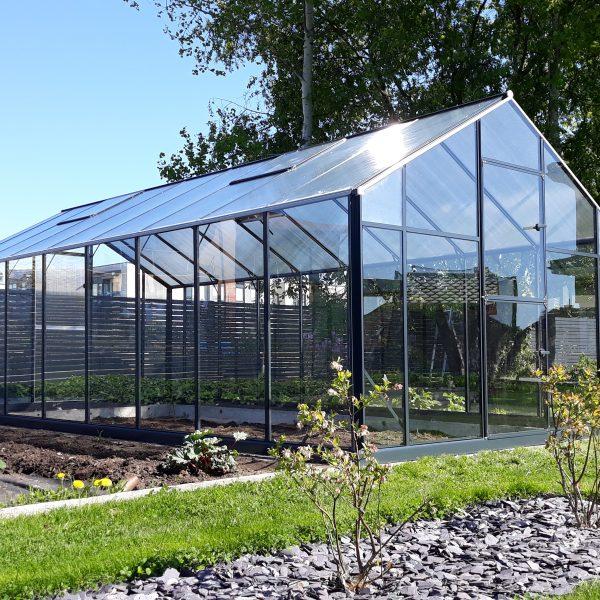 Drivhus Med Aluminium Konstruksjon og Glass